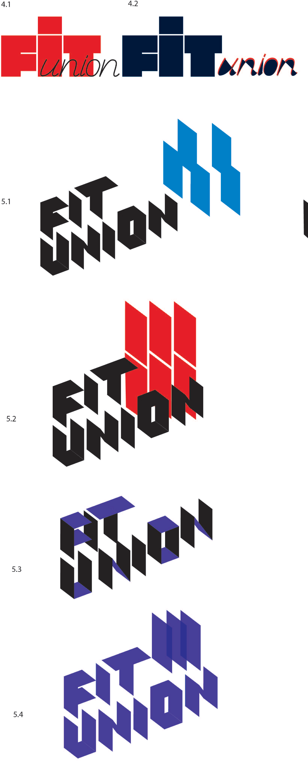 fitunion process 05