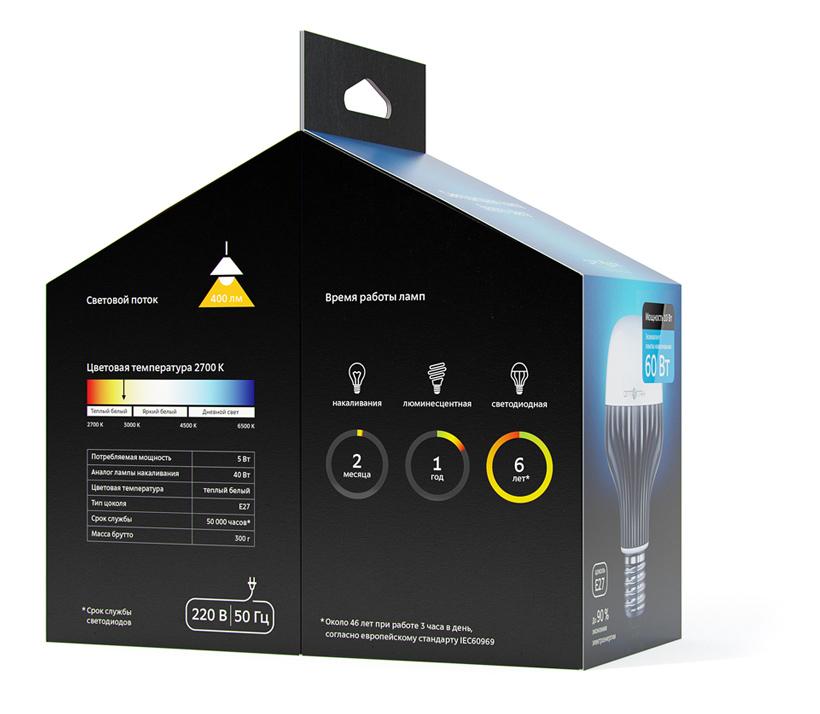 Packaging For The Optogan Led Lightbulbs
